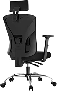 Hbada Ergonomic Office Desk Chair with Adjustable Armrest, Lumbar Support, Headrest and Breathable Skin-Friendly Mesh, Black