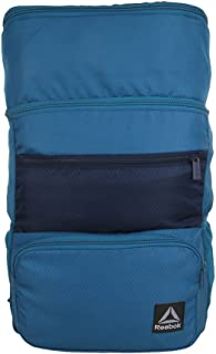 Reebok 21 Ltrs Blue Casual Backpack (CE9015)