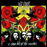 Incubus: A Crow Left of the Murder [Vinyl LP] (Vinyl)