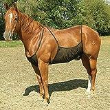 ALEOHALTER Hoja de mosca de caballo, protección del vientre, alfombras de mosca de caballo, mantas de abdomen de caballo, red protectora de elasticidad para el abdomen de caballo adulto