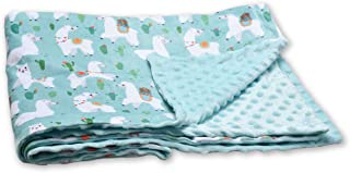 Plush Receiving Baby Blanket for Baby boy Baby Girl,30 x 48 Inch Assby Baby Blanket Super Soft with Double Layer Dotted Backing Alpaca