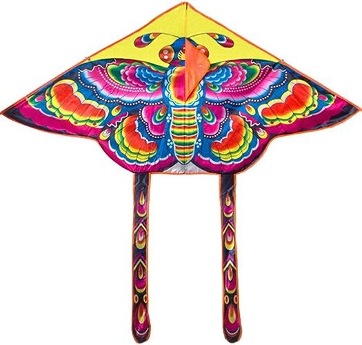GUNDAN 2 Pièces Set De Nylon Arc en Ciel Papillon Cerf-Volant en Plein Air Pliant Enfants Cerf-Volant Pilotable Kite Surf avec 60 Mètres De Ligne De Contrôle