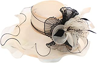 iLXHD Women's Organza Church Derby Fascinator Cap Kentucky Tea Party Wedding Hat Bridal Cap