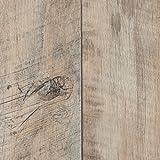BODENMEISTER BM70400 Vinylboden PVC Bodenbelag Meterware 200, 300, 400 cm breit, Holzoptik Diele...