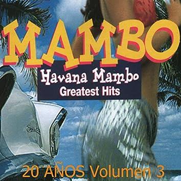 Greatest Hits: 20 Años, Vol. 3