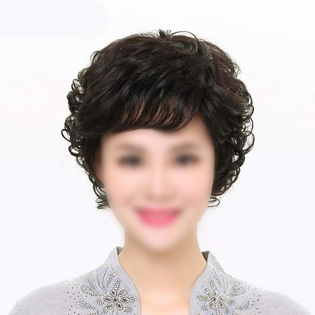 鉄道キャンベラ縞模様のかつら 母のかつらのための前髪付き女性のリアルヘアショートカーリーヘアー中年かつらファッションウィッグ (色 : 黒, Edition : Mechanism)