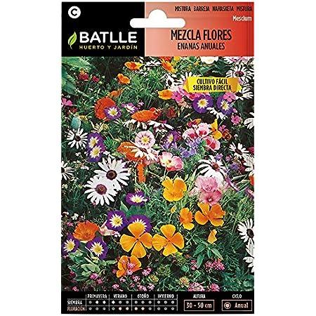 Semillas de Flores - Mezcla de Flores enanas anuales - Batlle