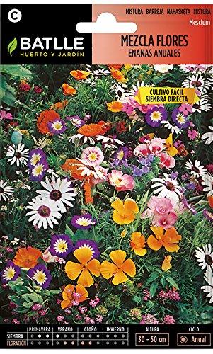 Semillas de Flores - Mezcla de Flores enanas anuales - Batll