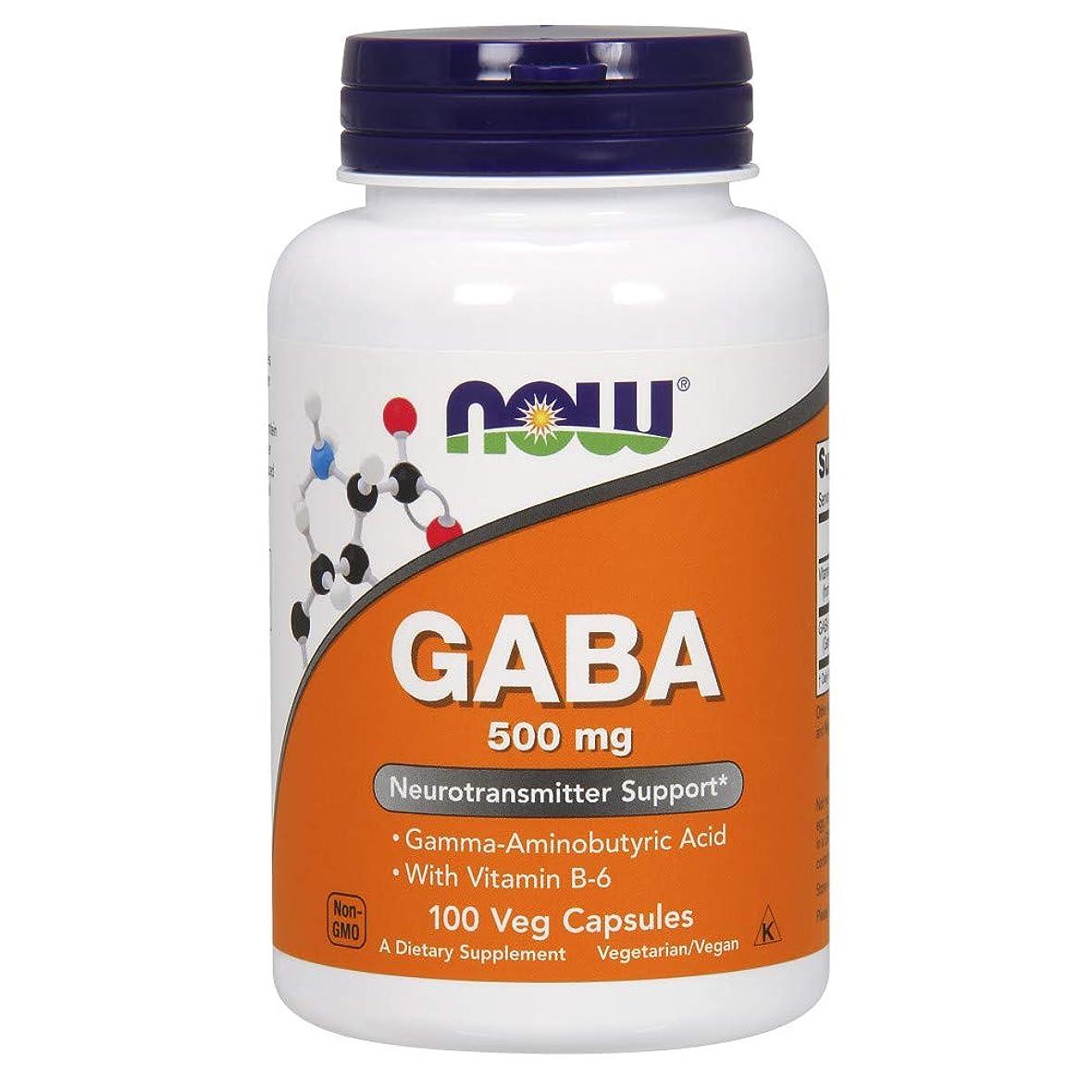 金属インストールアルミニウム[海外直送品] ナウフーズ ギャバ GABA(ガンマアミノ酪酸)+B6 100ベジタブルカプセル