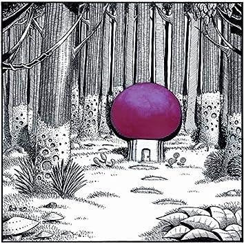 The Wonderland Sessions
