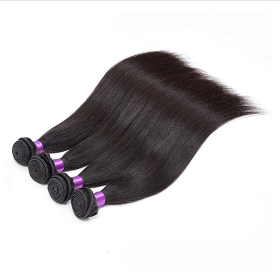 懐疑論青遠征BOBIDYEE 本当に人間の髪の毛の毛髪のかつら人毛ウィッグかつら8?21インチストレートヘア(1バンドル)のかつら本物のかつらロールウィッグロールプレイングかつら (サイズ : 14inch)