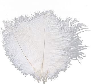 Z ZTDM 100pcs Ostrich Feathers 12''-14