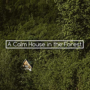 A Calm House in the Forest