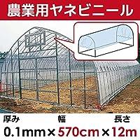 DAIM 【日本製】 屋根用ビニールハウス 厚み0.1㎜ 幅570cm 無滴透明 中接加工 (長さ12m)