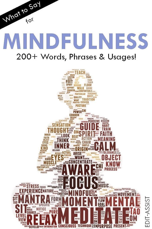 ダッシュスポンジ皮肉なWhat to Say for Mindfulness: 200+ Words, Phrases & Usages! (English Edition)