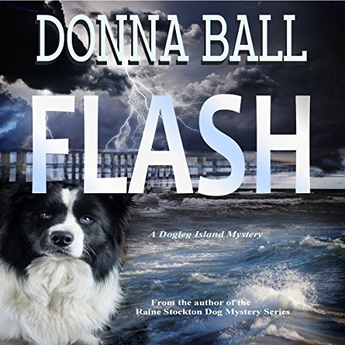 Flash audiobook cover art