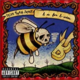 Songtexte von Less Than Jake - B Is for B-sides