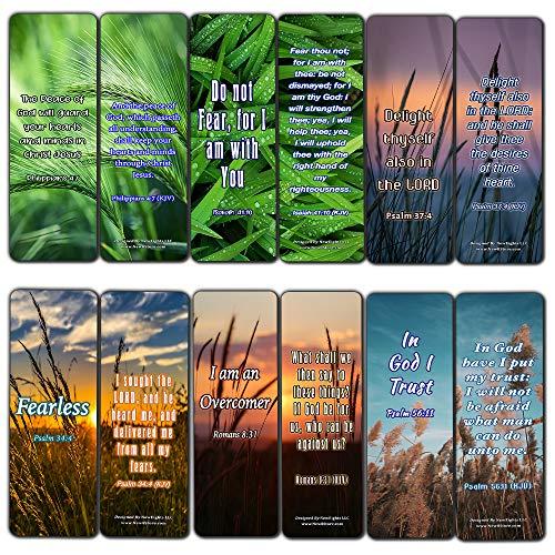 Sacra Bibbia versi di balsamo per l'anima Preferiti Cards (60-Pack)