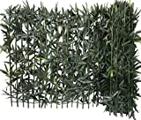 Siepe di Bambù Euro Castor Green