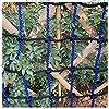 ロープ保護クライミングネット、子供用の遊び場ロープクライムネット 庭の木の家、スイングはしごの子供の安全登りネット 固定貨物車の重いデッキレースコースフェンスネットをロードします バルコニー手すり猫セーフティネット (Size : 6*6M(20*20ft))