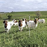 Fencing For Goats