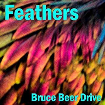 Feathers (Upbeat Synthwave with Bruce Beer Drive)
