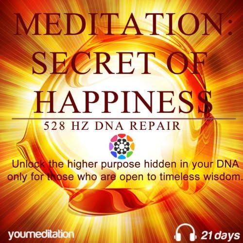 Meditation Secret of Happiness 528 Hz Dna Repair product image