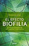 El efecto biofilia: El poder curativo de los árboles y las plantas (Entorno y bienestar)