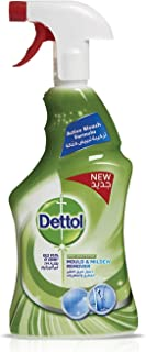 Dettol Mould & Mildew Remover 500 Ml