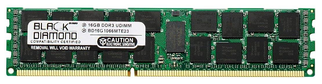 防腐剤アパルあいまい16GB RAM Memory for HP ProLiant Series DL160 G6 Black Diamond Memory Module DDR3 ECC Registered RDIMM 240pin PC3-8500 1066MHz Upgrade