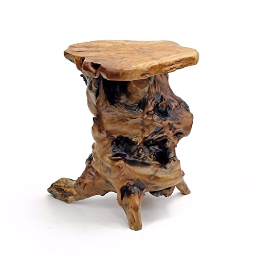 Surprising Tree Stump Furniture Amazon Com Camellatalisay Diy Chair Ideas Camellatalisaycom