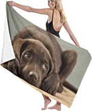 Jxrodekz Beautiful Adorable Chocolate Lab Puppy Sweet Pretty Cute Labrador Microfiber Beach Towels Quick Dry Super Absorbent Bathing Spa Pool Towels for Swimming & Outdoor 80x130cm