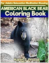 AMERICAN BLACK BEAR Coloring book for Adults Relaxation  Meditation Blessing: Sketches Coloring Book  Grayscale Images