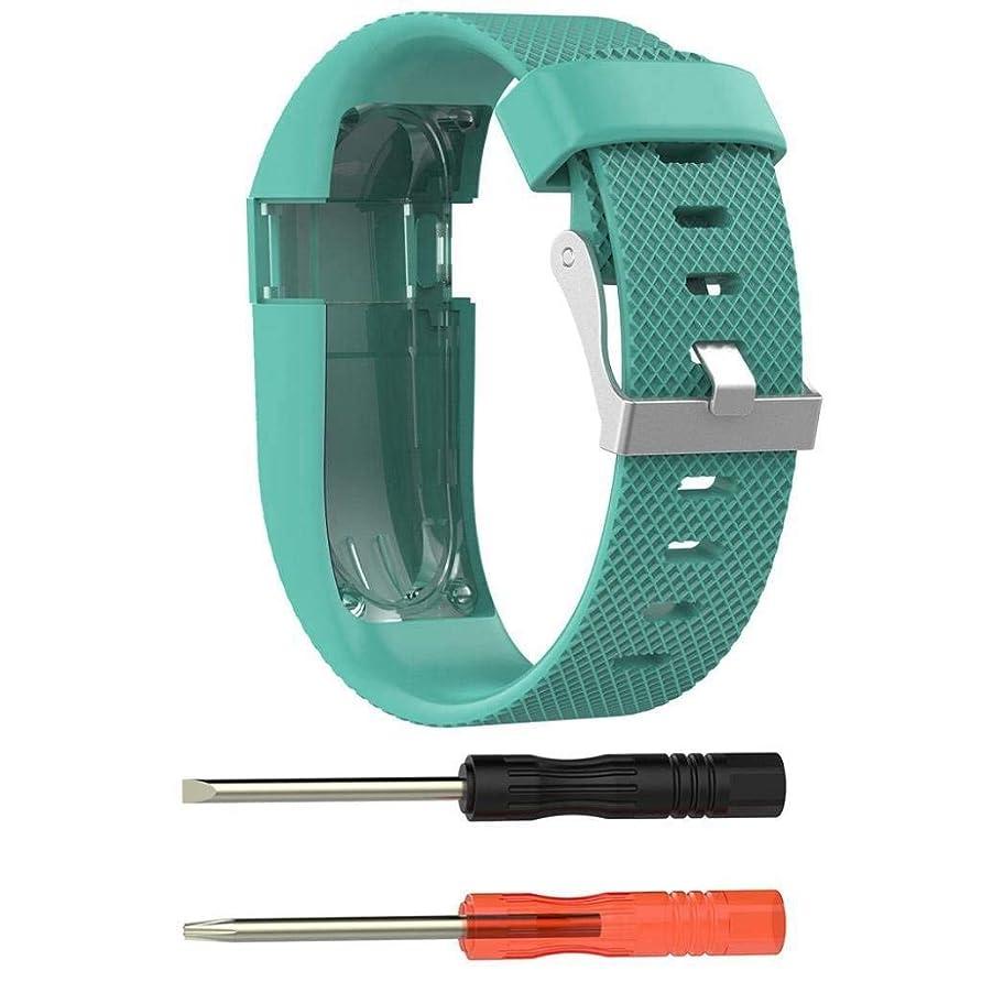 非効率的な一生エスニックACAMPTAR Fitbit Charge HR用バンド、交換用アクセサリー ブレスレット バンド シリコンバンド ラバーストラップ スマートウォッチストラップ バンド Fitbit Charge HRに適用して(ラージサイズ、グリーン)