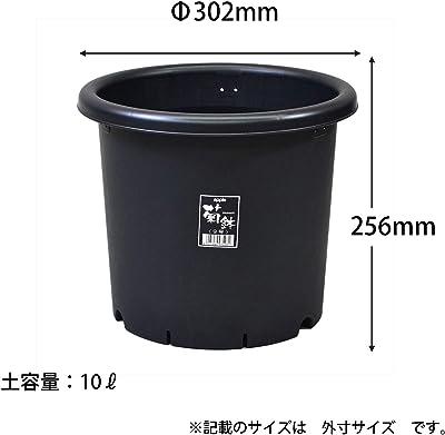 アップルウェアー 菊鉢 9号 ブラック