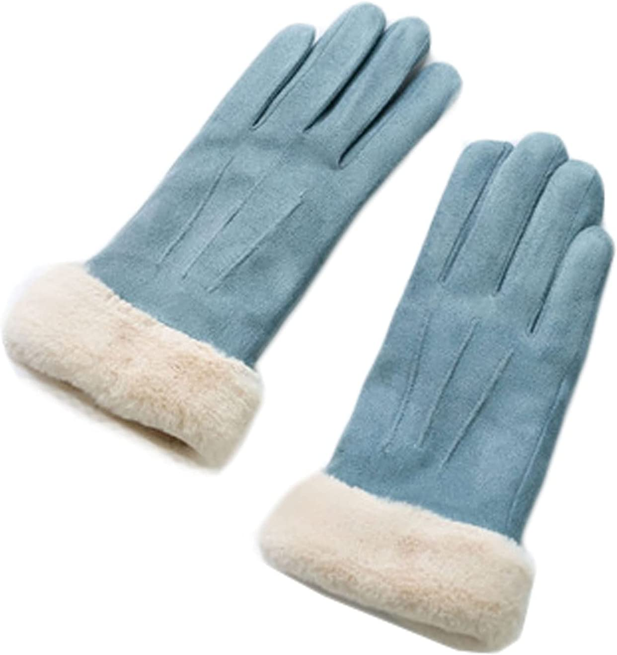 FAYDOO Lace Gloves Cold Protection Warm Gloves Women Winter Suede Autumn and Winter Touch Screen Cute Plus Velvet Thickening Sun Protection Gloves (Color : Blue)