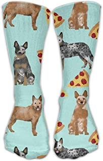 red heeler socks