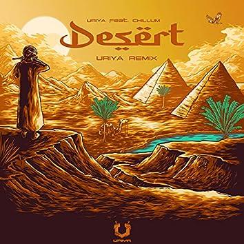 Desert (feat. Chillum) [Live Remix] (Live Remix)