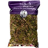 SuperMoss (21577) Forest Moss Dried, Natural, 8oz