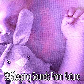 52 Sleeping Sounds From Nature