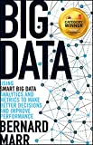 Big Data: Using SMART Big Data, Analytics and Metrics To Make Better Decisions and Improve Performance (English Edition)