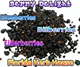 Berry Delight POWDER - A Supreme Blend of Wild Blueberries,...