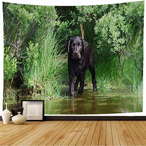Tapiz de Pared Tapestry Marrón Activo Labrador Cachorro Perro Asustado Agua Animales Vida salvaje Acción Verde Adorable Baño Piel Negro Wall Hanging 80X60inch