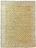 The Rug Republic Ronan - Alfombra (190 x 290 cm), color dorado