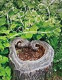 Trophic Cascade (Wesleyan Poetry Series) (English Edition)