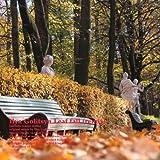 Leaf Fall (Ilya Golitsyn Remix)