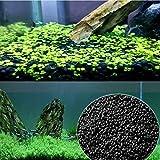YG-ct Acquario Terreno for waterweeds Acqua Piante Fertilità del Suolo substrato di Sabbia Acquario pianta Fish Tank acquatica Galleggiante Weed Erba Fornitura (Colore : 200g)