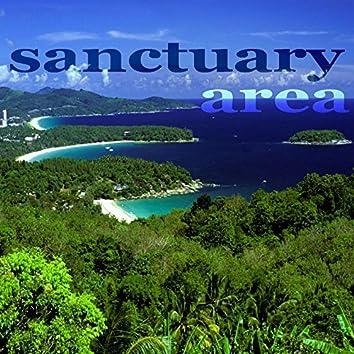 Sanctuary Area (Electro House Music)
