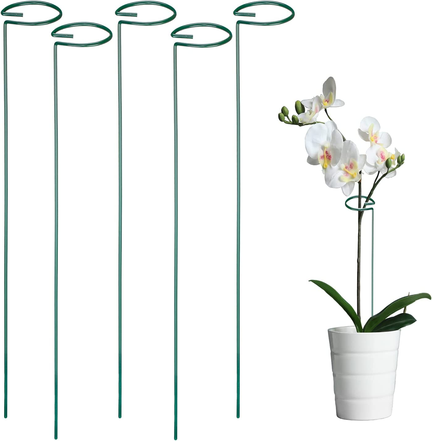 POLIUMB Plant Support Stakes,Metal Garden Flower Support Plant Support Stakes,Single Stem Plant Stakes Flower Support Rings for Flowers, Orchid, Peony, Lily, Rose (17 Inches-5 Pack)