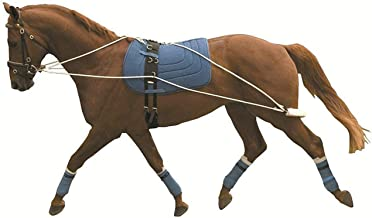 kincade lunging system